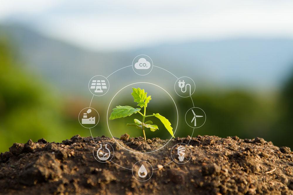 Nous respectons l'environnement, nous recyclons, nous limitons notre impact environnemental lors de la production et la conception